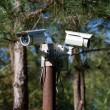 Security surveillance cameras — Stock Photo