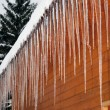Stock Photo: Icicle crystals