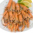 Cooked langoustes - Stock Photo