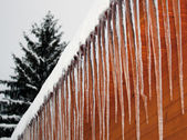 Icicle crystals — Stock Photo