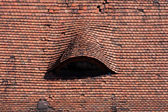Roof tiles of the Radziwill Castle — Stock Photo