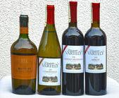 Moldova wines set — Stock Photo
