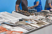 Raw fresh seafood for sale at the market — Stock Photo