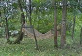 Rope hammock hanging between trees — Stock Photo
