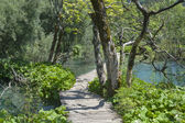 Lake and walk pathway — Stockfoto