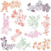Vector Collection of Hand Drawn Flowers — 图库矢量图片