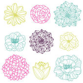 Vector Collection of Hand Drawn Flowers — Stock Vector