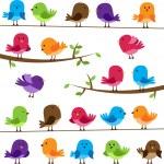 vecteur série d'oiseaux colorés de dessin animé — Vecteur