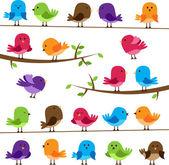 Vector Set of Colorful Cartoon Birds — Stock Vector