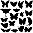 Vector Collection of Butterfly Silhouettes - Stock Vector