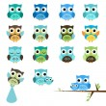 Vector Set of Boy Baby Shower Owls — Stock Vector #25643193