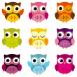 Stock Vector: Cute Vector Collection of Bright Owls