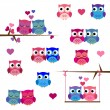 Vector Set of Valentine's Day or Love Themed Owls — Vector de stock