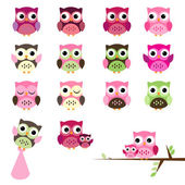 Vector Set of Girl Baby Shower Owls — Stock Vector