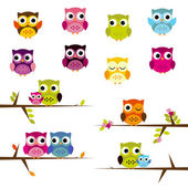 Cute Vector Set of Owls — Stock Vector