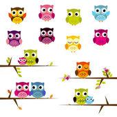 Cute Vector Set of Owls — Stock Vector