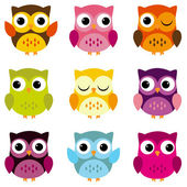 Cute Vector Collection of Bright Owls — Stock Vector