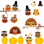 Vector Set of Thanksgiving Themed Owls — Stock Vector