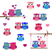 Vector Set of Valentine's Day or Love Themed Owls — Stock Vector