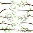 Vector Collection of Tree Branch Silhouettes — Stock Vector #27835245