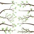 Vektorové kolekce ze stromu větev siluety — Stock vektor
