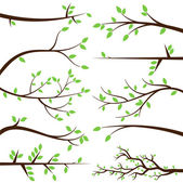 Vector Collection of Tree Branch Silhouettes — Stock Vector