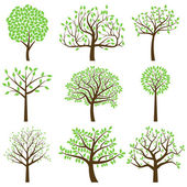 Vector Collection of Stylized Tree Silhouettes — Stock Vector