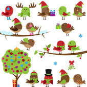 Vector Collection of Christmas and Winter Birds — Stock Vector