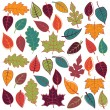 Large Vector Set of Abstract Autumn Leaves — Stock Vector