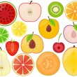 Vector Collection of Fruit Slices — Stock Vector