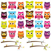 Vector Collection of Cute Owls and Seasonal Branches — Stock Vector