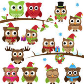 Vector Collection of Christmas Holiday Themed Owls and Branches — Stock Photo