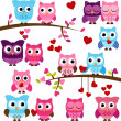 Vector Collection of Valentine's Day or Love Themed Owls — Stock Photo