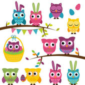 Vector Collection of Easter and Spring Themed Owls — Stock Photo