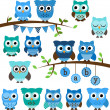 Vector Collection of Boy Baby Shower Themed Owls and Branches — Stock Photo