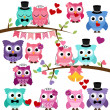 Vector Set of Wedding Themed Owls and Branches — Stock Photo
