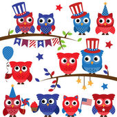 Set of Vector Fourth of July or Patriotic Owls and Branches — Stock Photo