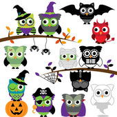 Vector Collection of Spooky Halloween Owls — Stock Photo