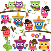 Cinco de Mayo Themed Collection of Owls and Branches — 图库照片