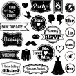 Vector Collection of Vintage Wedding Themed Badges and Stamps — Foto Stock