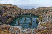 Vivero de crustáceos abandonados — Foto de Stock