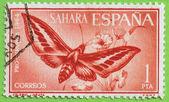 Stamp sahara — Stock Photo