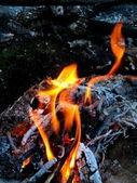 Fogo — Fotografia Stock