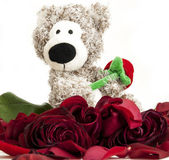 Bear toy with red roses — Stock Photo