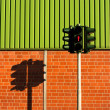 Traffic light and shadow — Stock Photo #23792777