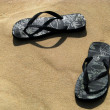 Where did i leave my flipflop sandals — Stock Photo