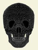 Human Skull Vector — Stock Vector