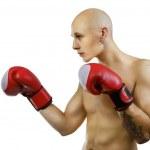 Young boxer on white, studio — Stock Photo #23886165