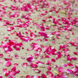 Rose petals laying at the ground - Stock Photo
