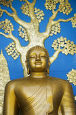 Buddha portrait from the world peace pagoda, nepal, pokhara — Stock Photo